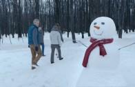 "Celebrex – ""SNOW DAY"""